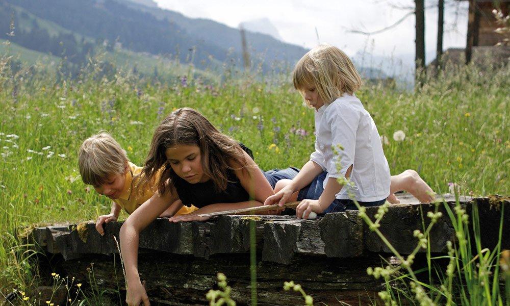 Una vacanza in agriturismo con bambini in Alto Adige è assolutamente incredibile